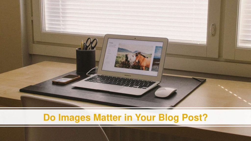 Images Matter in Your Blog Post